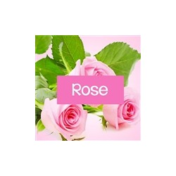 Fragancia Rosa Damascena.